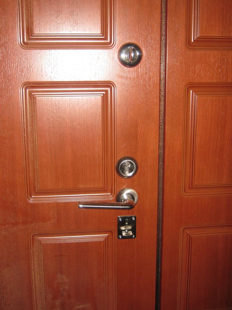 ивантеевка дверь входная купить